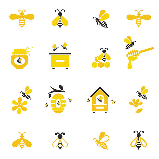 Bee and honey icon set. Bee and honey icon set. Set of honey and bee labels for honey logo products. Vector illustration isolated on white background. beehive stock illustrations