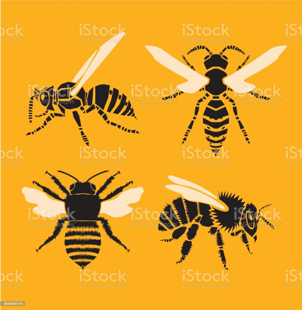 Bee and Wasp vector art illustration