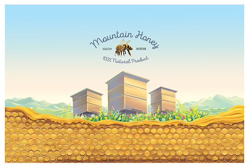 Bee apiary with honeycomb.