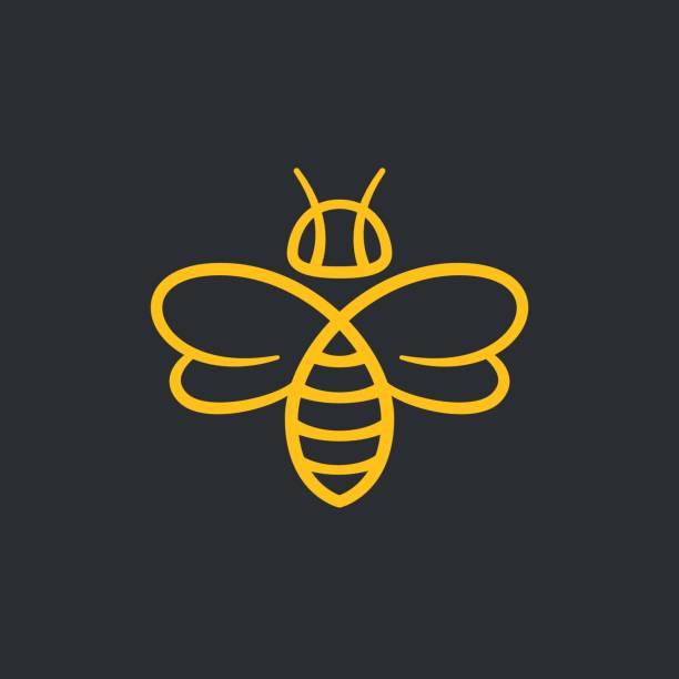 ilustrações de stock, clip art, desenhos animados e ícones de bee design - abelha