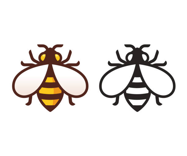 Bee emblem illustration Bee icon in color and black and white. Simple, modern vector symbol. Isolated honeybee illustration. bee clipart stock illustrations