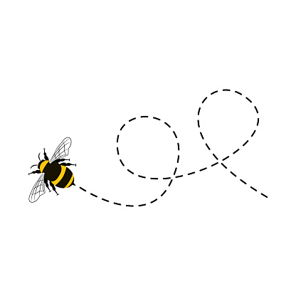 Bee flying on a dotted route isolated