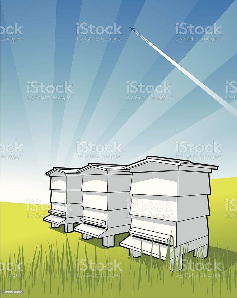 Bee Hives vector art illustration