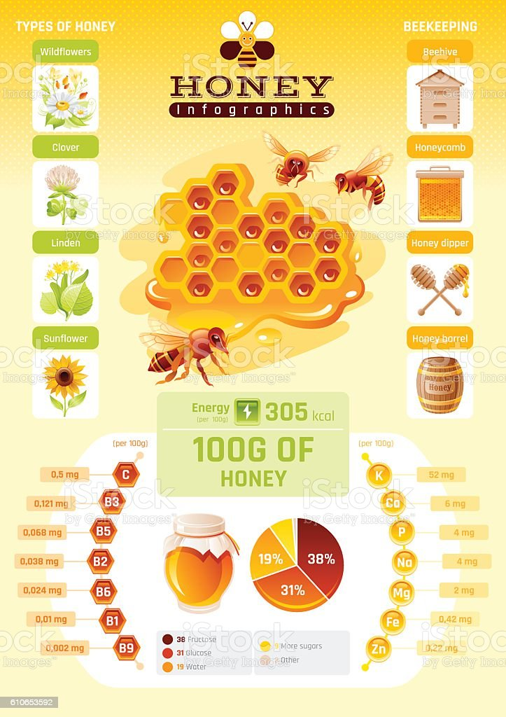 Bee honey template infographics diagram world map food cartoon icons bee honey template infographics diagram world map food cartoon icons royalty free ccuart Images
