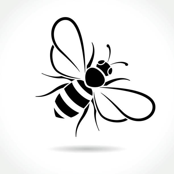 ilustrações, clipart, desenhos animados e ícones de ícone de abelha em fundo branco - bee