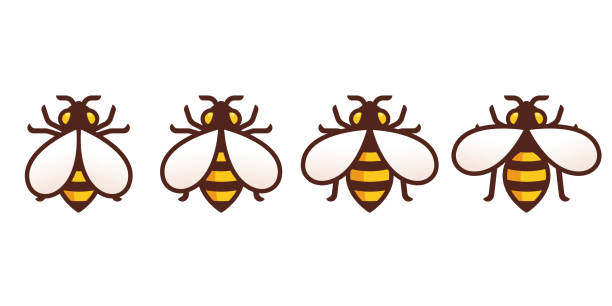 Bee icon with wing animation Bee icon with moving wings animation frames. Simple modern honeybee symbol, isolated vector illustration. bee borders stock illustrations
