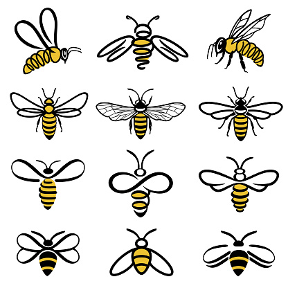 Bee icons