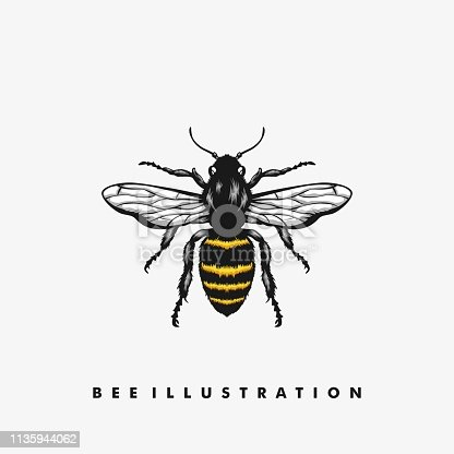 Bee Illustration Concept illustration vector Design template.  Suitable for Creative Industry, Multimedia, entertainment, Educations, Shop, and any related business