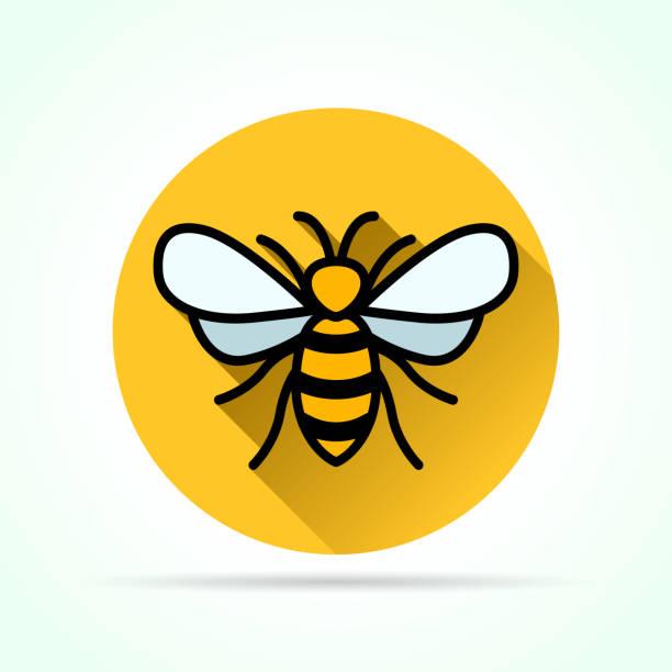 ilustrações, clipart, desenhos animados e ícones de abelha em ícone de círculo amarelo - bee