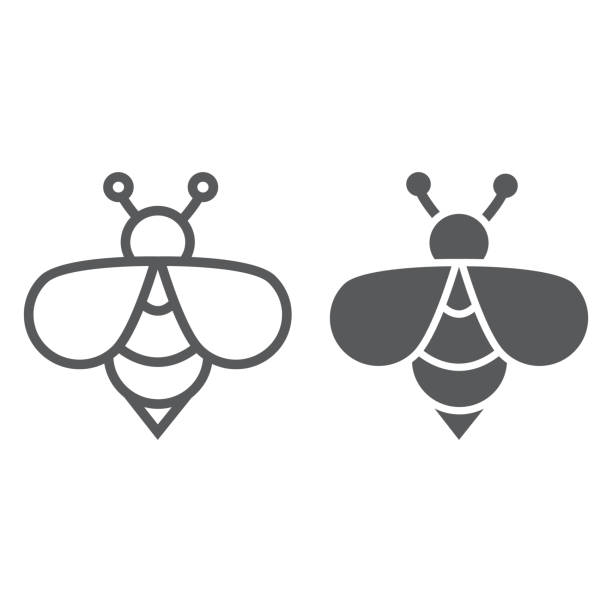 ilustrações de stock, clip art, desenhos animados e ícones de bee line and glyph icon, animal and honey, insect sign, vector graphics, a linear pattern on a white background. - inseto himenóptero