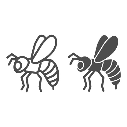 Bee line and solid icon, insects concept, Honeybee sign on white background, Flying Bee insect icon in outline style for mobile concept and web design. Vector graphics.