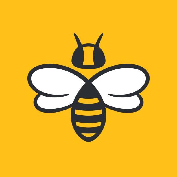 ilustrações, clipart, desenhos animados e ícones de design de logotipo de abelha - bee