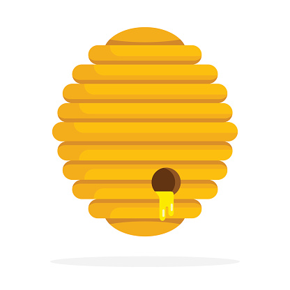 Bee nest with honey flat isolated