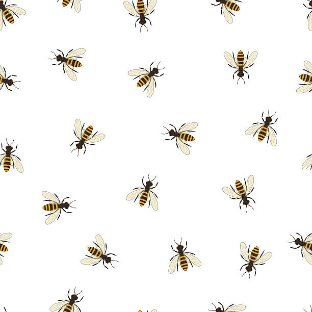 Bee seamless pattern. Black and orange silhouette of the bee. vector art illustration