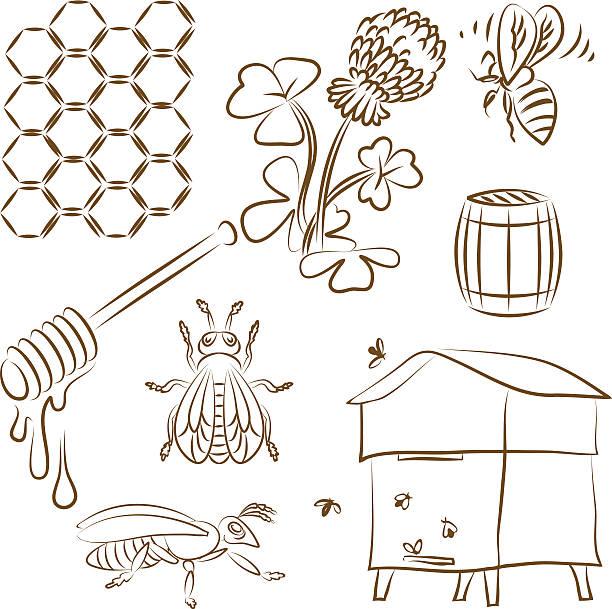 biene-set - bienenwachs stock-grafiken, -clipart, -cartoons und -symbole