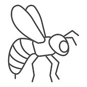Bee thin line icon, insects concept, Honeybee sign on white background, Flying Bee insect icon in outline style for mobile concept and web design. Vector graphics