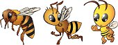 Bee drawing in three steps from real to cartoon