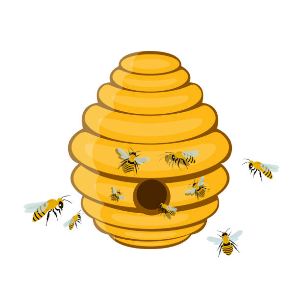 Bee tree hive vector design illustration isolated on white background Beautiful vector design illustration of beehive stock illustrations