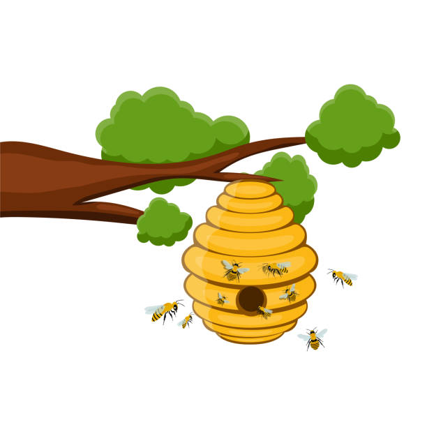 Bee tree hive vector design illustration isolated on white background Beautiful vector design illustration of swarm of insects stock illustrations