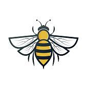istock bee 1043506548