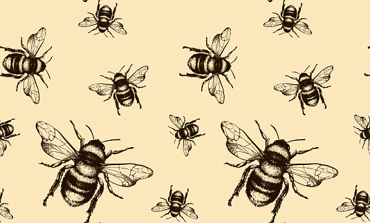 Bee vector seamless pattern