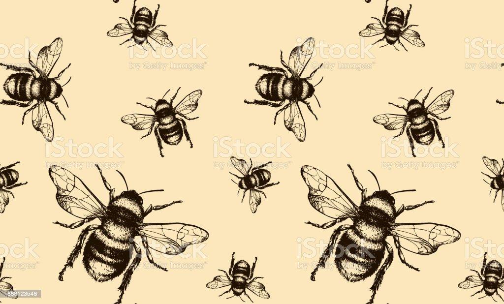 Bee Vektor nahtlose Muster – Vektorgrafik