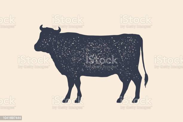 Beef cow poster for butchery meat shop vector id1041697444?b=1&k=6&m=1041697444&s=612x612&h=gyvt6vn o0wxybvketehiw8c5t darog8ieuc ksfks=