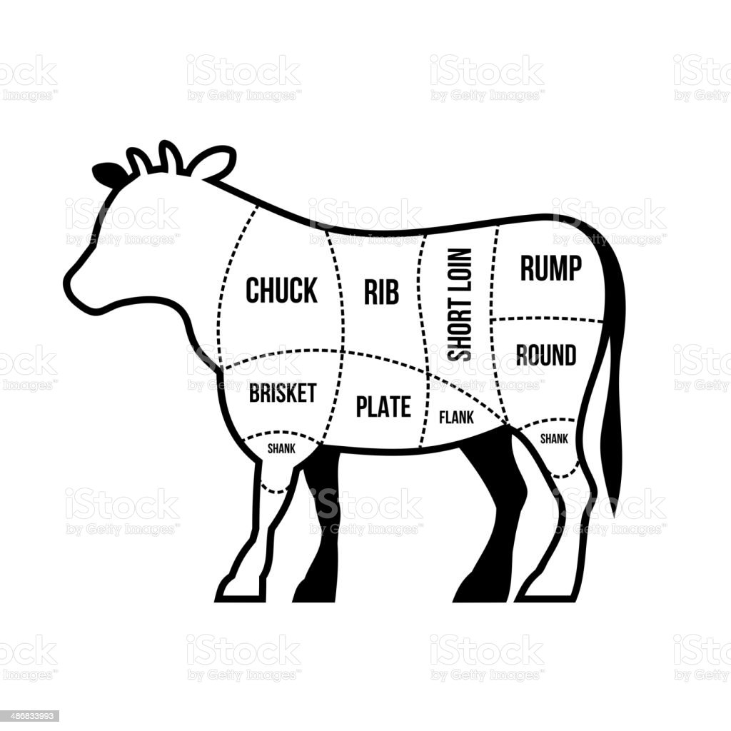 Beef Cuts Chart Cow Isolated On White Background Vector Stock Vector ...