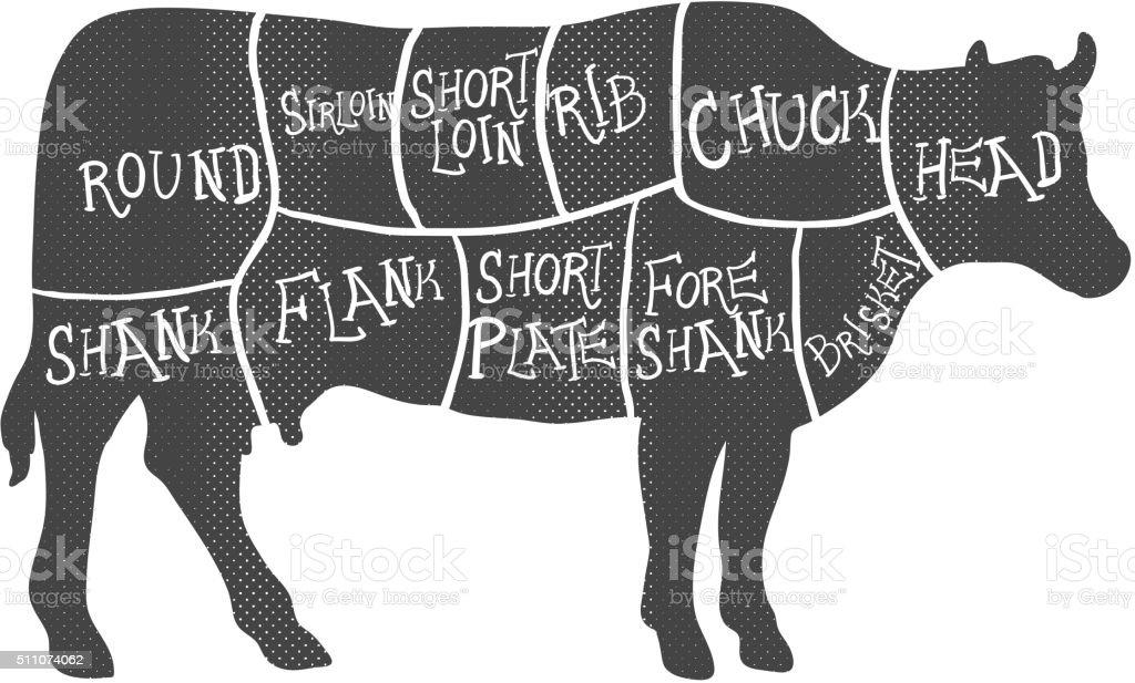 Beef cuts diagram butchering Vector illustration vector art illustration