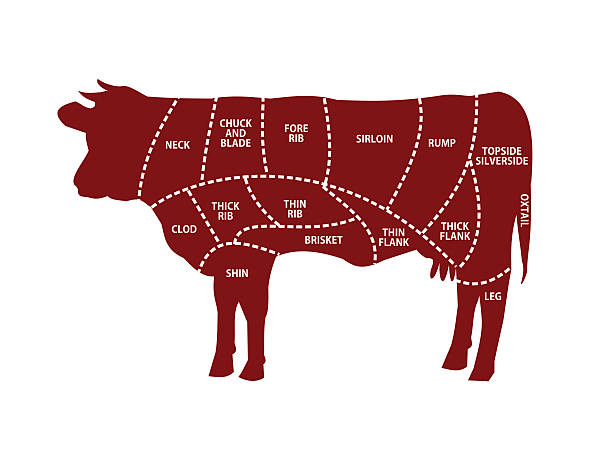 ilustrações, clipart, desenhos animados e ícones de beef cuts vector illustration - carne