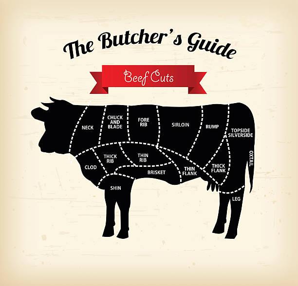 ilustrações de stock, clip art, desenhos animados e ícones de beef cuts vector illustration - beef angus