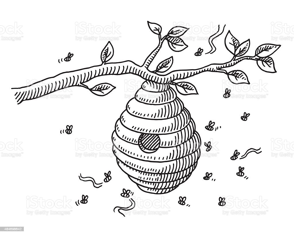 Beehive On Branch Drawing vector art illustration