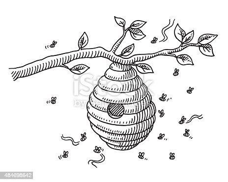 Beehive On Branch Drawing Stock Vector Art & More Images