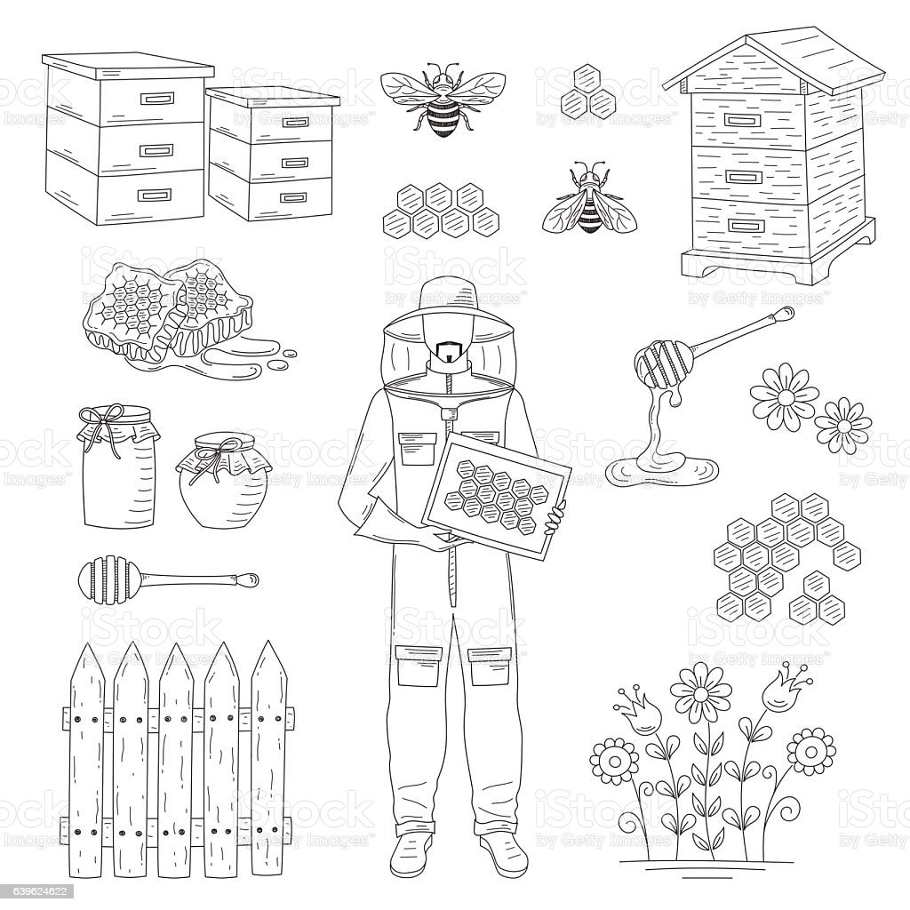 Beekeeper and honey set vector - Illustration vectorielle