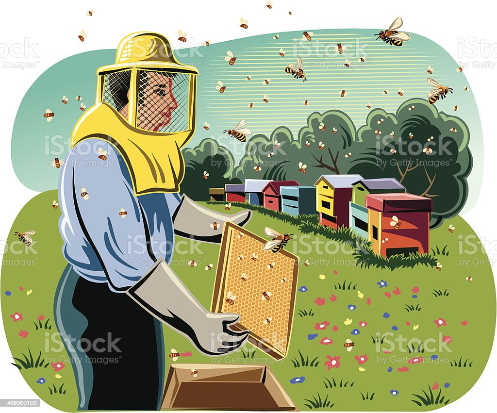 beekeeper with hives royalty-free stock vector art