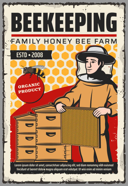 Beekeeper with honey bee, honeycombs, beehives Beekeeping farm with honey bee, beehives and beekeeper vector design. Apiary bee hives, honeycombs and apiarist with beeswax frame, protective suit, hat and mask. Sweet food, apiculture themes beekeeper stock illustrations