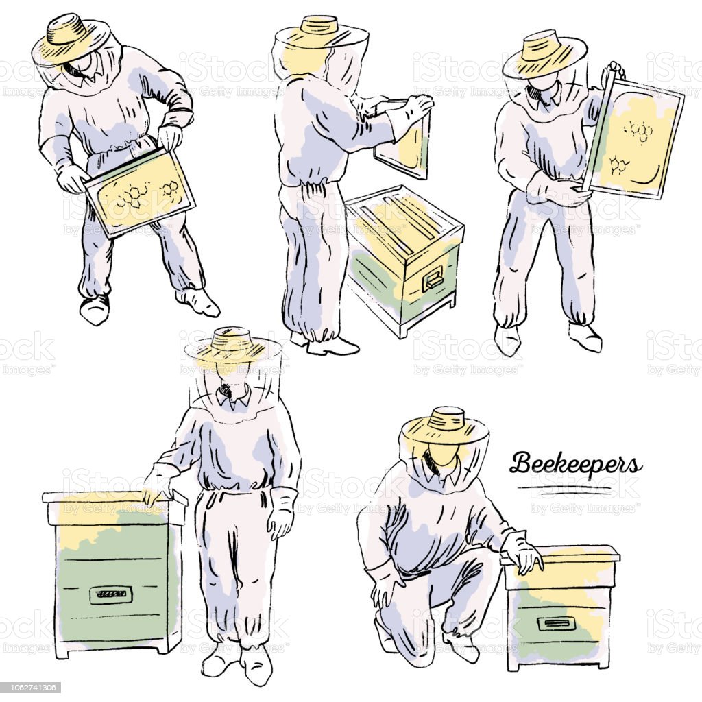 Ensemble des apiculteurs - Illustration vectorielle