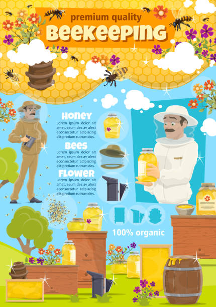 Beekeeping apiary farm and beekeeper, vector Beekeeping. Beekeeper man at apiary taking organic natural honey from hive. Vector cartoon honey bees swarm in honeycomb and flowers, wooden beehive beekeeper stock illustrations