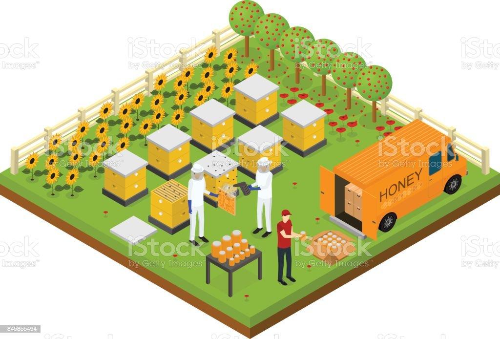 Apiculture rucher ferme Concept isométrique vue isométrique. Vector - Illustration vectorielle