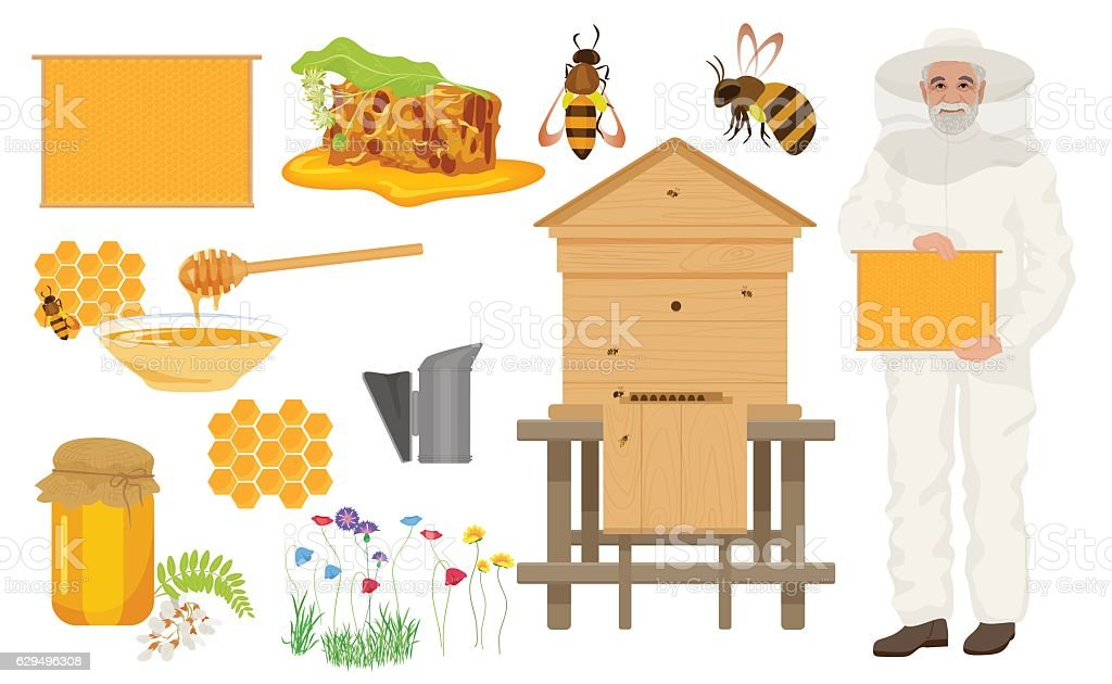 Beekeeping color icons set. Man beekeer in special uniform costume - Illustration vectorielle