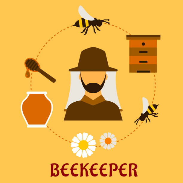 Beekeeping concept with beekeeping and apiculture symbols Beekeeping concept with beekeper in hat and apiculture symbols around him including honey jar, flying bees, flowers, wooden beehive and dipper with drop of liquid honey beekeeper stock illustrations