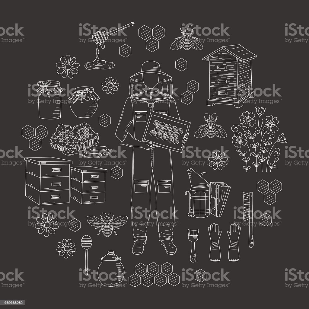 Beekeeping honey collection vector - Illustration vectorielle