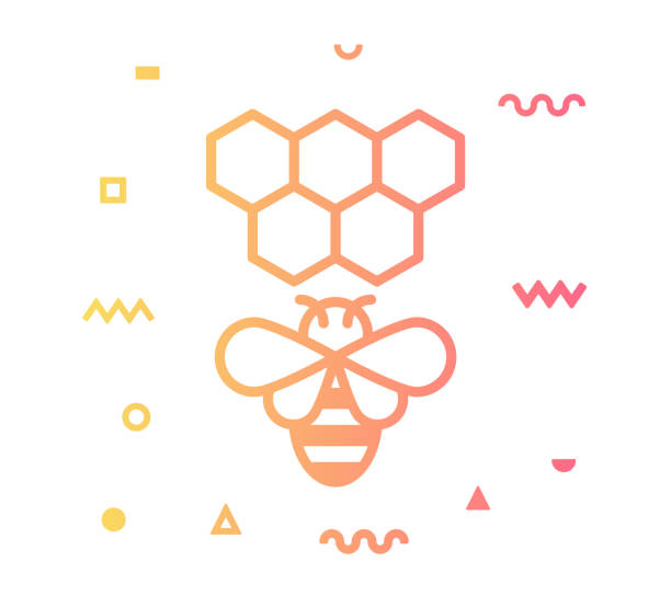Beekeeping Line Style Icon Design Beekeeping outline style icon design with decorations and gradient color. Line vector icon illustration for modern infographics, mobile designs and web banners. beehive stock illustrations