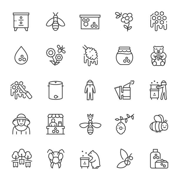 Beekeeping, linear icon set. Production of honey, beekeeping equipment. Apiary, apiculture. Editable stroke Beekeeping, icon set. Production of honey, beekeeping equipment. Apiary, apiculture, linear icons. Line with editable stroke beekeeper stock illustrations