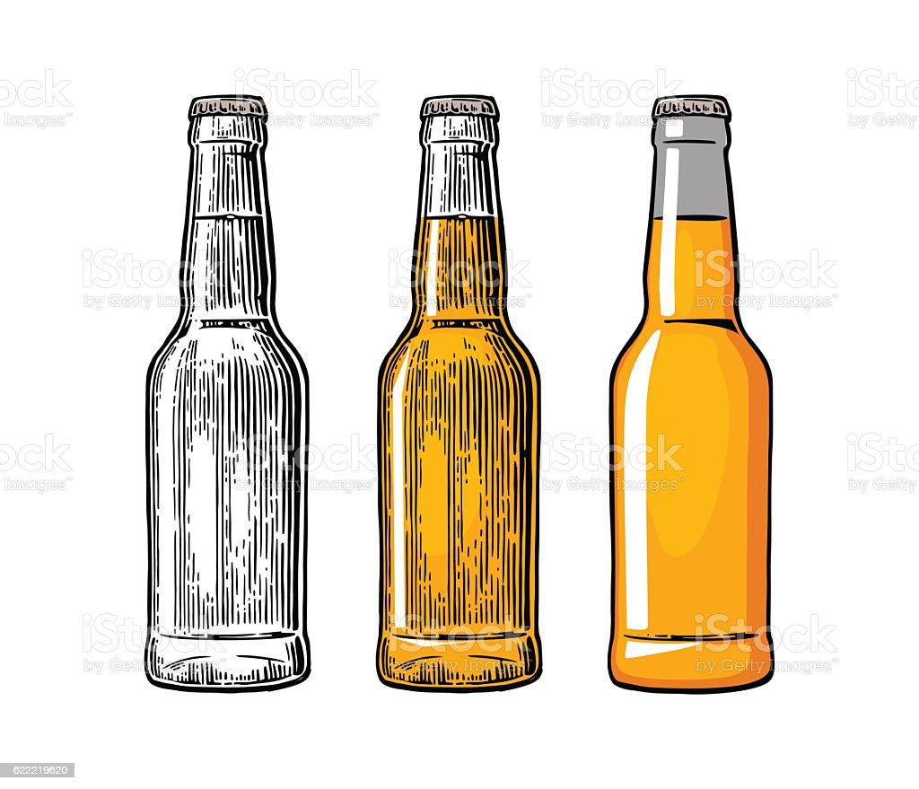 Beer bottle. Color engraving and flat vector illustration vector art illustration