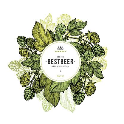 Beer hop frame. Engraved style illustration. Vintage beer design template.