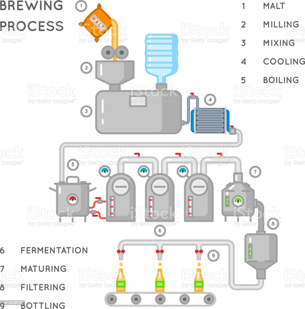 Beer process. Brewing infographic or brewery vector illustration vector art illustration