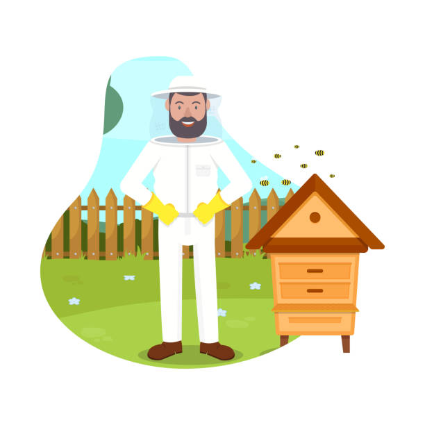 Bees Fly near Beekeeper. Beehive in Apiary. Vector Protective Suit. Beemaster at Spiary. Breed Bees. Bees Flying near Hive. Beekeeper Costume. Beehive in Apiary. Apiary on White Background. Vector Illustration. Hobby Beekeeping. Man in Protection Mask beekeeper stock illustrations
