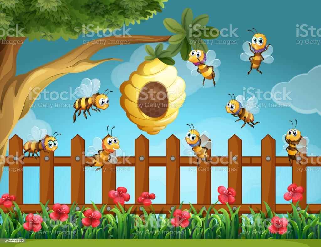 Fliegende Bienen Um Bienenstock Im Garten Stock Vektor Art Und Mehr
