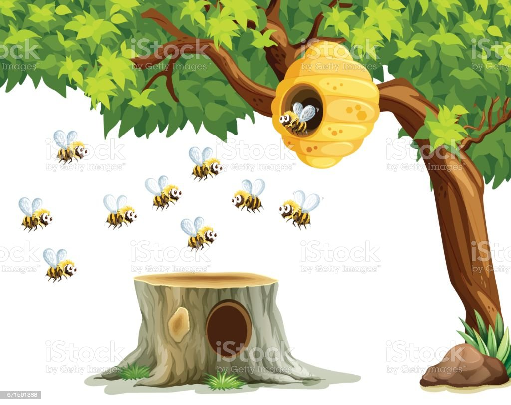 Bees flying around beehive on the tree vector art illustration